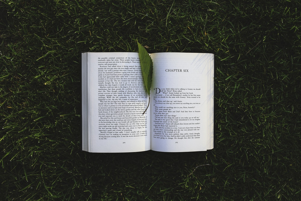 A book opened on the grass with a leaf for a bookmark.
